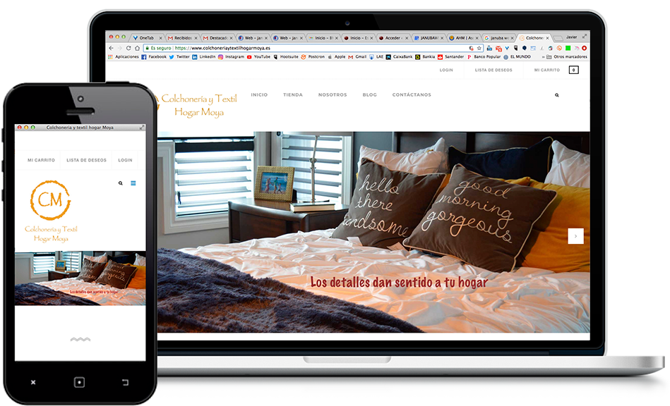janubaweb, diseño web