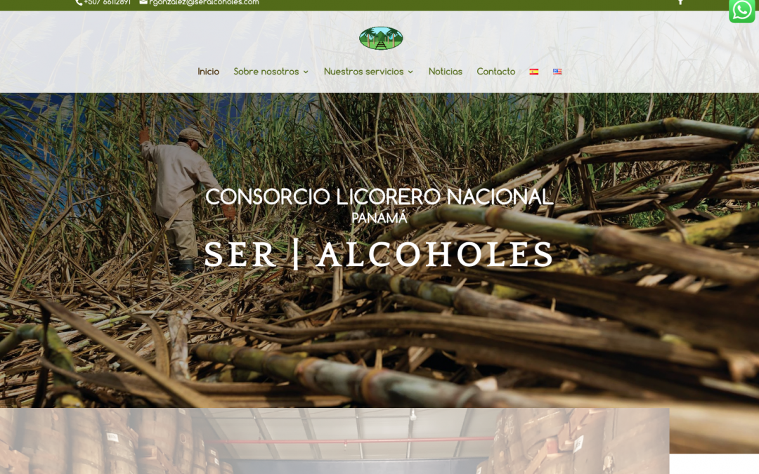 CLN la primera web internacional de Janubaweb